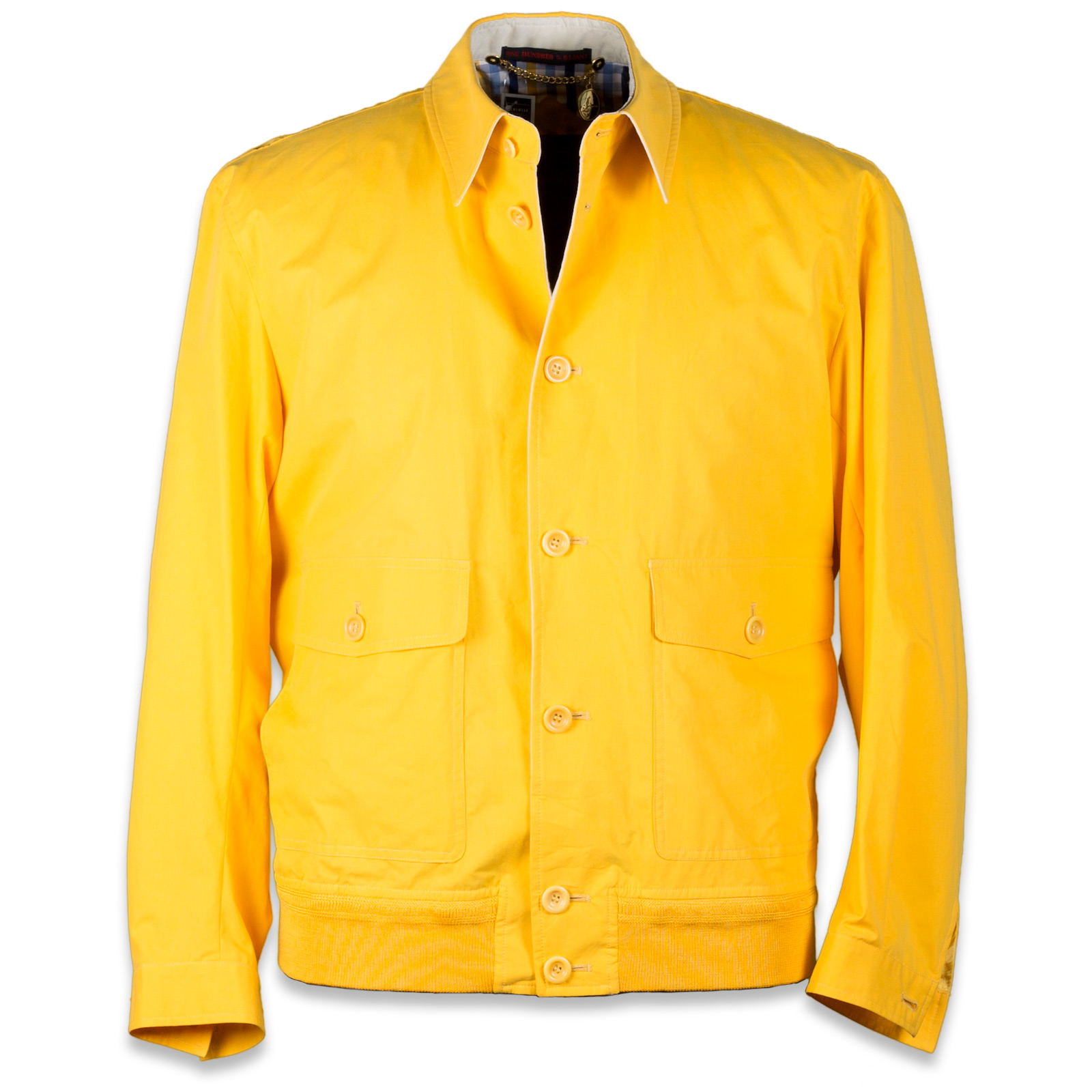 yellow jacket jpg